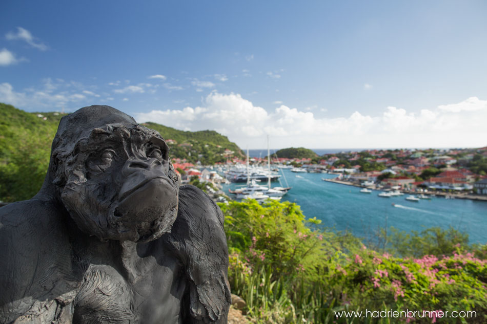 saint-barth-port-gustavia-photographe